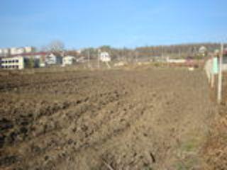 Lot Merenii Noi, r-l Anenii Noi ,se vinde urgent teren pentru constructie, drept, ingrijit, fintina,