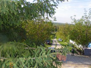 Продается приватизированный дачный участок со строительным вагоном в дачной зоне села Иванчя