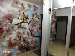 Квартира с хорошим ремонтом 3-х комнатная Бельцы