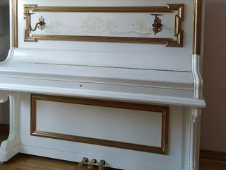 acordor de piane, настройщик пианин, роялей, реставрация...