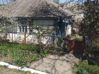 Дом в центре г. Флорешть