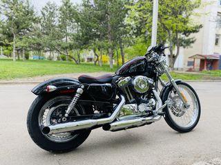 Harley - Davidson XL1200V