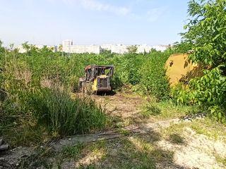Evacuarea gunoiului, curatirea terenurilor, avem si lucratori