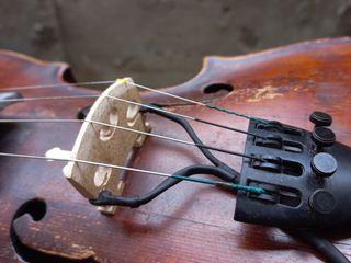 Doza vioara