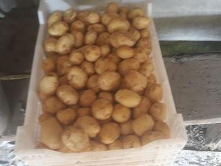 Vind cartofi