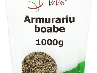 Hrana fără cereale pentru pisici: Ce trebuie să știți | galstudio.ro