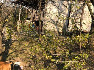 Дом-дача в 3х км от Яловен в сторону Костешт в 10ти км от Кишинева
