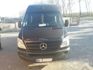 Mercedes Delfin 313
