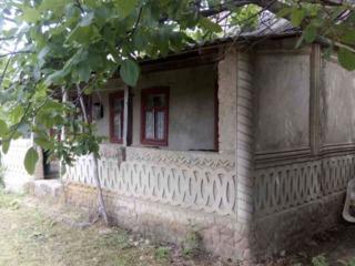 Casa in satul Mindresti !Centru
