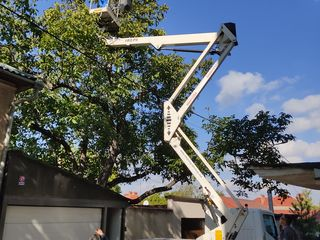 Taierea arborilor periculosi,curatarea de crengile uscate,curatenie în gospodărie,spălarea fatadei.