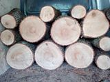 Lemne pentru foc( дрова)
