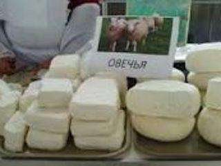 Cumpar brinza de oi,capre