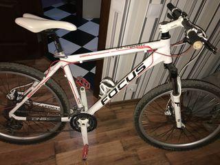 Bike FocusWhistler, Sport Series