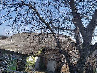 Se vinde casă in Brănesti ,Orhei