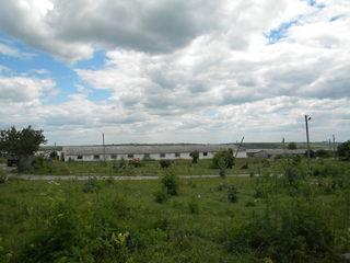 Колоница производство 4500 м помещения 2га земли.Все коммуникации 180000 ев