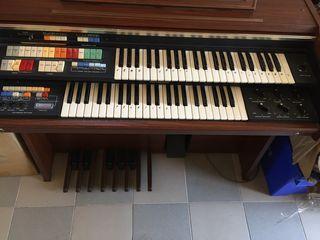 Organ National