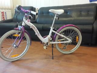 Bicicleta author