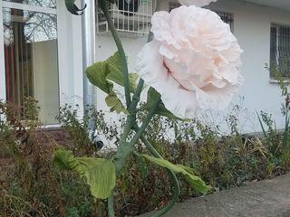 Floare decorativă la doar 400 lei