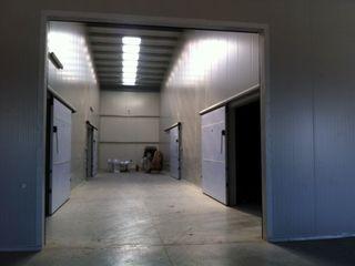 Chirie camere in depozit frigorific