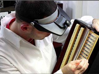 Профессиональный ремонт аккордеон Reparatie acordeon de orice tip!