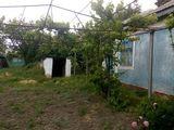 Дом, с. Елизавета