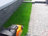 Semanam gazon,instalam sisteme de irigare p-ru gazon,sadim copaci,gazon rulou