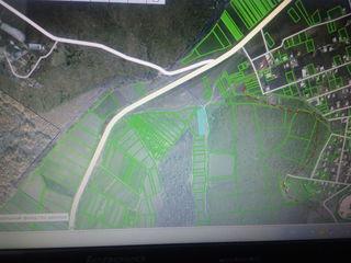 teren agricol la drum 2504 m2