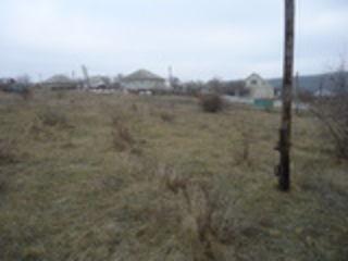 14 сот Анены под строительство (2 участка рядом по 7 соток).
