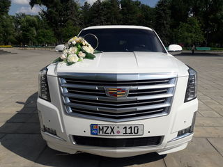 Reduceri!!! limuzine in Chisinau ,limuzine in Moldova