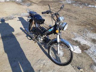 Delta Moto Delta 110cc