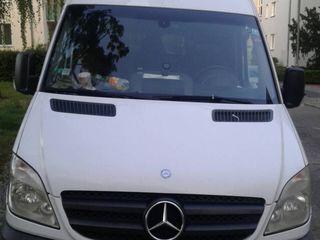 Mercedes Delfin 315