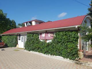 Продается (аренда) коммерческая недвижимость в центре новых анен.