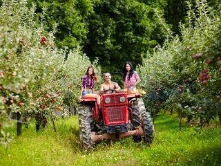 Teren agricol  !!! Suprafeţe mari şi mici...
