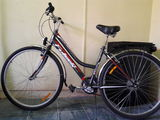 Bicicleta de oras.