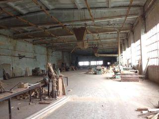 Hala Industriala 1300 m2 / Producere / Depozite / Arenda / Calarasi