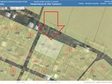 Vind 2 terenuri vecine, in total 12 ari, comuna Danceni, linga Iaz