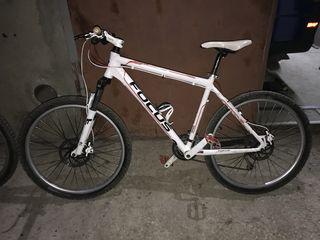 Bicicleta FocusWhistler