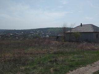 Se vinde terenul pentru constructii. Продаю земельный участок Сынжера.