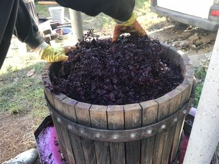 Vin de casa! rosu (Moldova+Lidia) curat,natural fara adaosuri 100%
