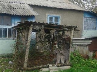 Продается дом по адресу село Новая-тэура,Сынжерейский район. Дом на два входа,есть 4 комнаты