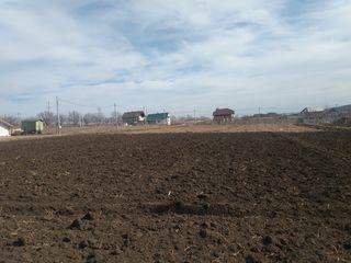 Teren pentru constructii sat. Bălțata