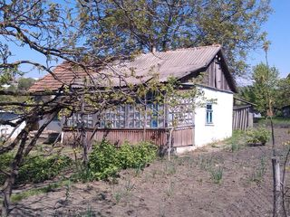 Lot de pămînt pentru construcție 30.73 ari. Satul Puhoi.