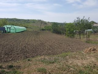 Vind lot de pământ sat. Ghidighici
