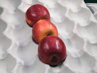 Alveole din carton reciclat pentru transportarea merelor pentru lada de tip deschis  600 x 400 x 150