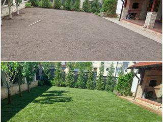 Уход за садом, работа с газоном любой сложности, обрезка растений, топиарная стрижка.