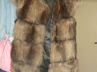 Vind blanita si paltonas toamna iarna