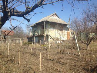 Дача с домом Трушенские земли, рядом озеро и лес.