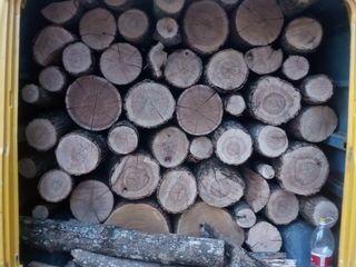 Vindem lemne