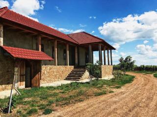 Vind sau arenda(+-25 ani)gospodarie si padure privata de salcim ранчо rancho