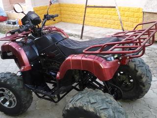 Motomax 55555